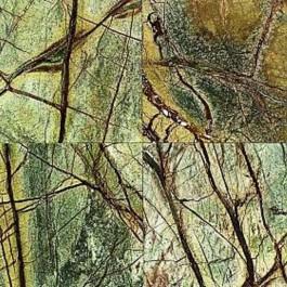 Rain Forest Polished 12X12