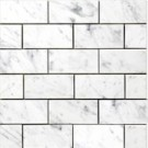 Carrara Marble Subway Tile