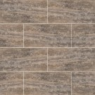 Silver Vein Cut 12X24 Honed Travertine